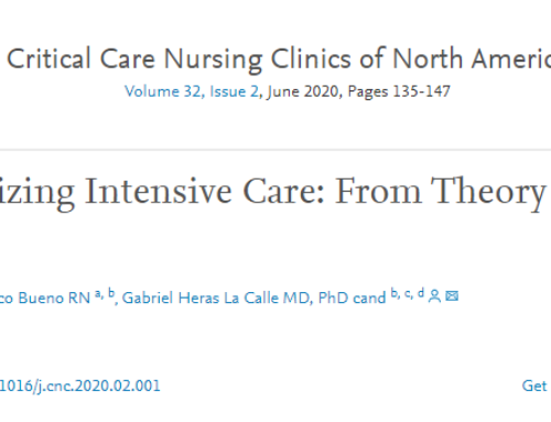 Humanizing Intensive Care: From Theory to Practice